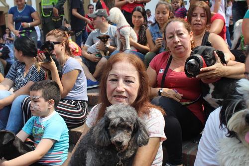 Jornada de vacunación y esterilización realizada por la fundación Misión Animal Santander (MAS) en la entrega del premio Bucaramanga sin límites. /FOTO JONATHAN DELGADO NEIRA FUNDADOR Y DIRECTOR DE MAS.